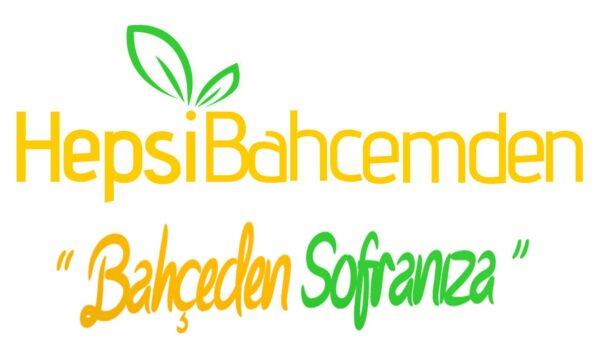 limon fidanı logo