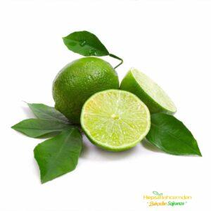 Yediveren Misket limon ağacı