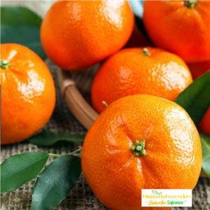 Mandarin_klemantin