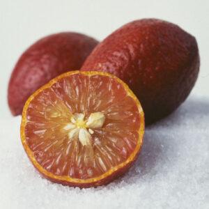 Blood lime Limon